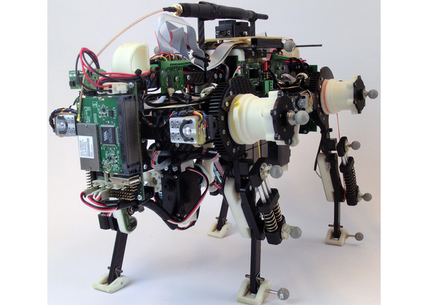 Cooperation work on Oncilla Open-Source Quadruped Robot