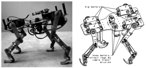 Passive compliant quadruped robot using central pattern generators for locomotion control